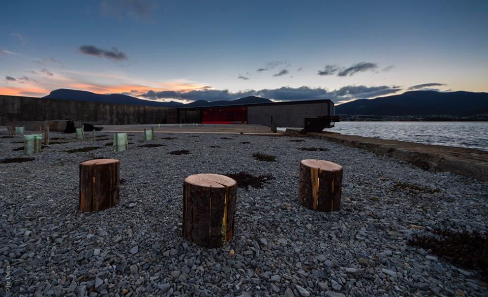 Duncan Meerding Log Lamps Cracked Wood