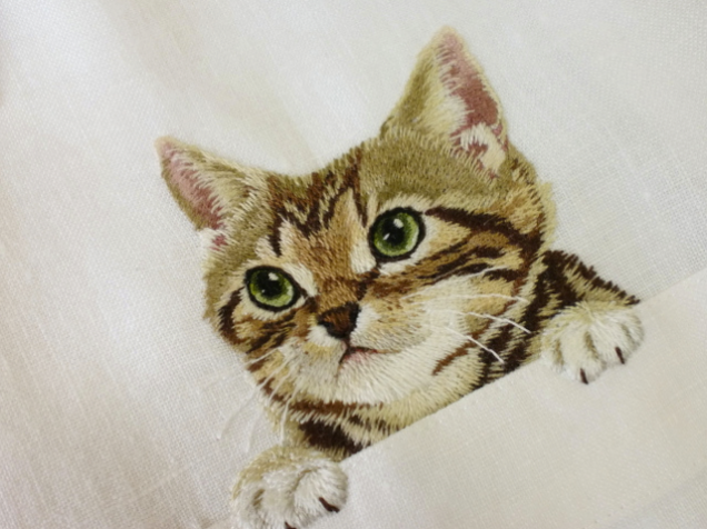 Hiroko Kubota's cat shirt