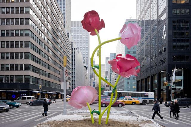 Will Ryman The Roses New York City
