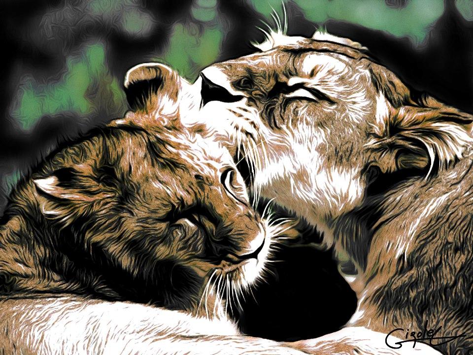 Claude Girolet - Tigers