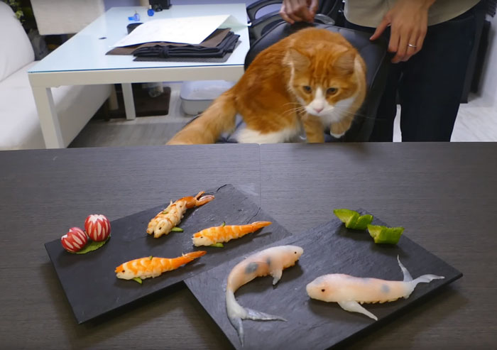 real-life-swimming-koi-sushi juns kitchen