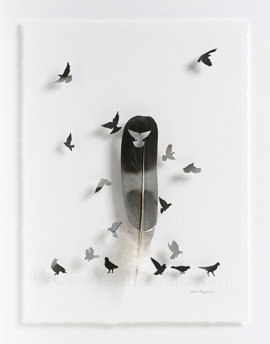 Chris Maynard Feather Art