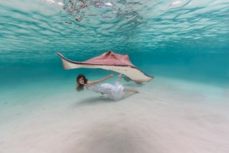 Elena Kalis Stingrays Project
