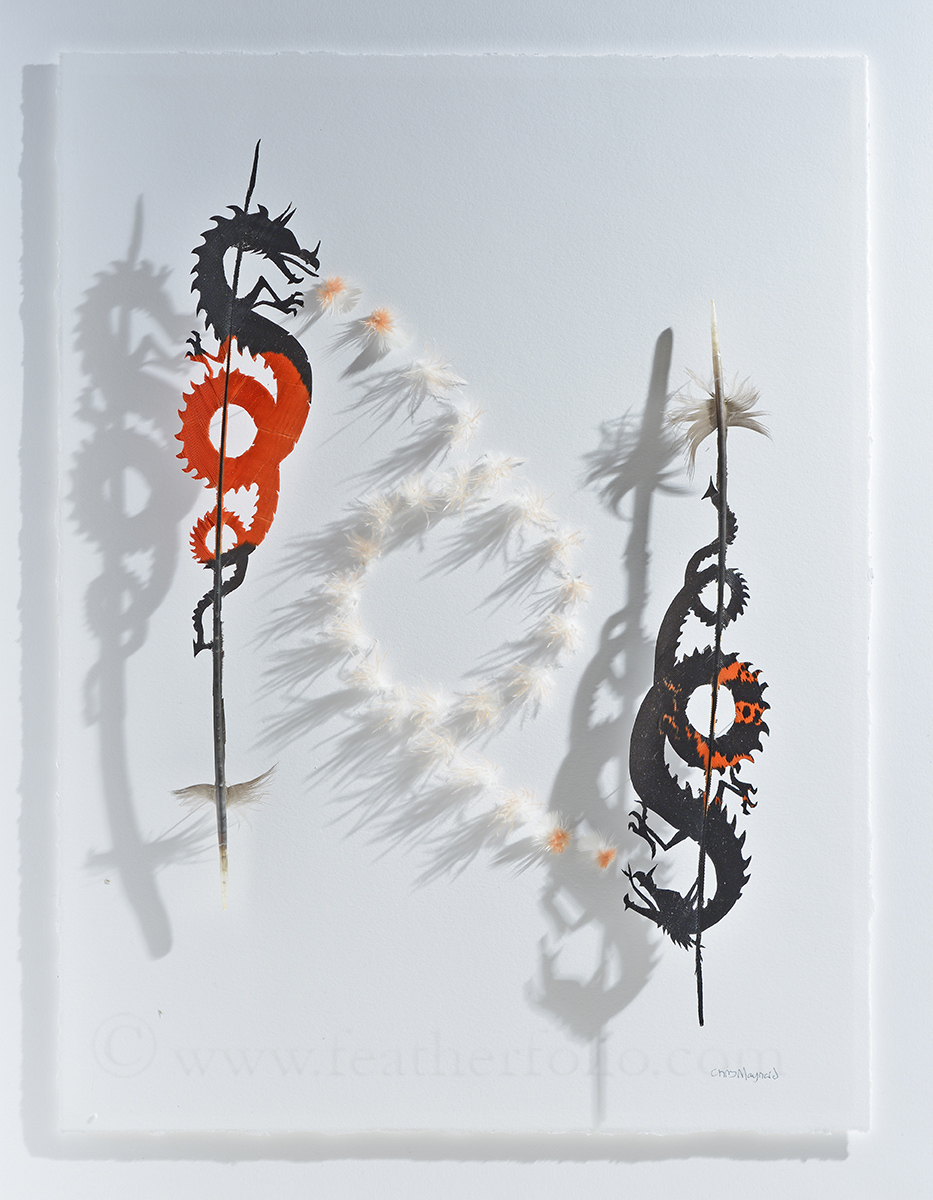 Chris Maynard Feather Art